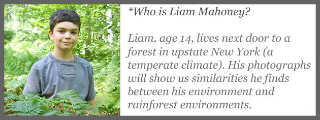 Nature blogger Liam Mahoney