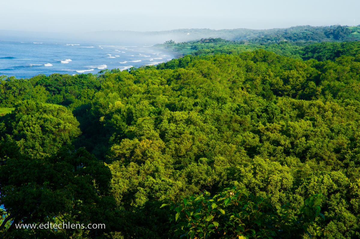 tropical rainforest Costa Rica's Rainforest - EdTechLens Science Blog Image Ellen Senisi