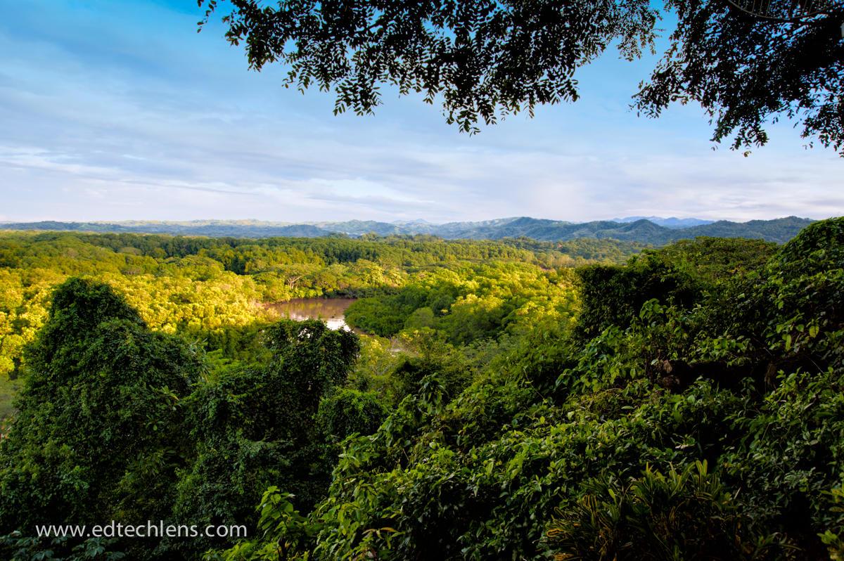 Costa Rica Rainforest Weather Water Cycle Image Ellen Senisi