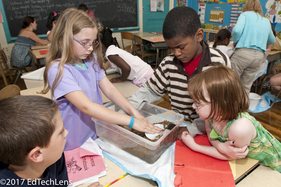 A third-grade student group in works on the problem of soil erosion and how it could be minimized or prevented.