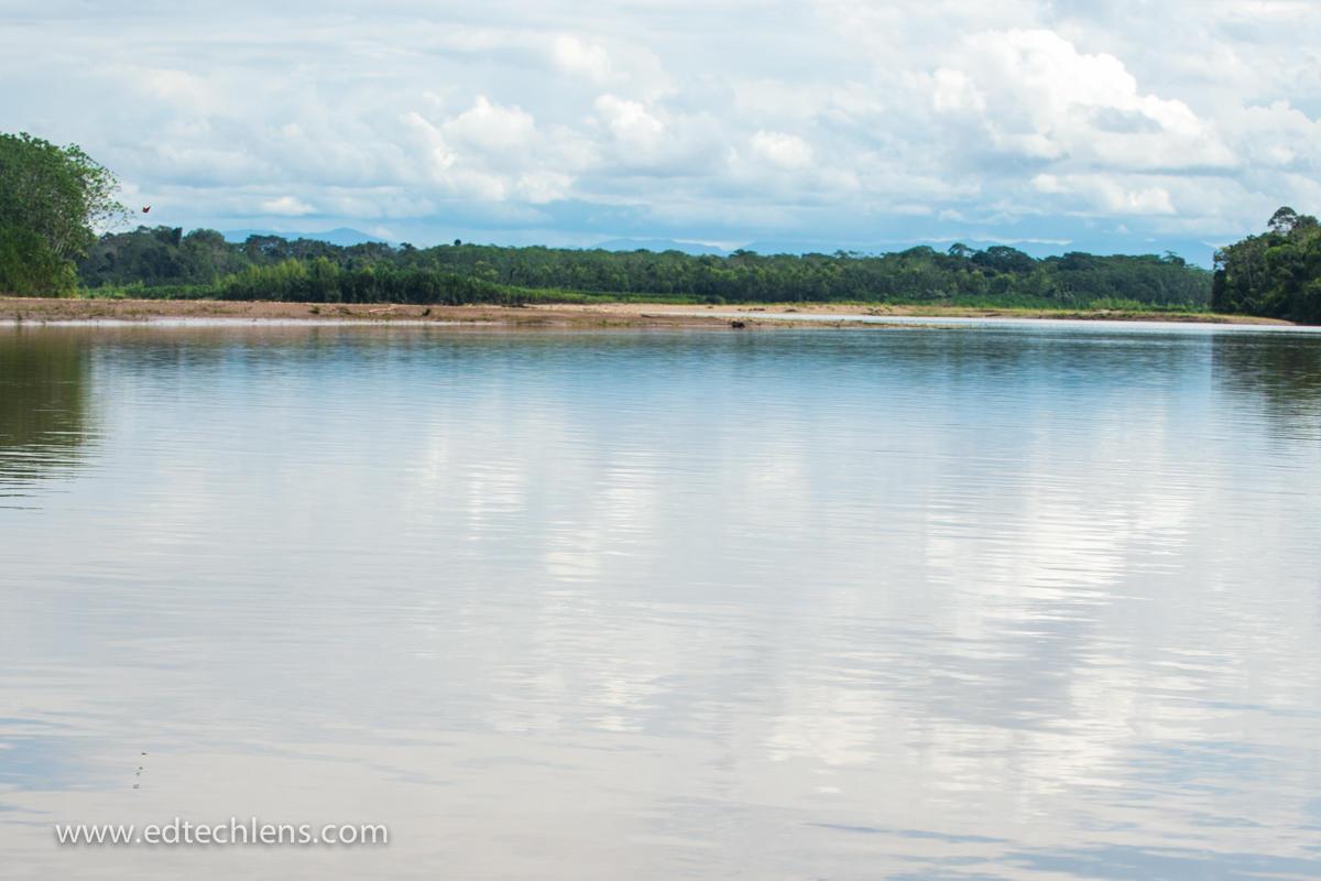 Rainforest river and skyline