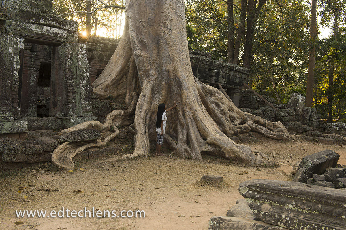 Secondary Rainforest Taking Back Land EdTechLens Cambodia, Siem Reap, Angkor Archeological Park, Banteay Kdei Temple