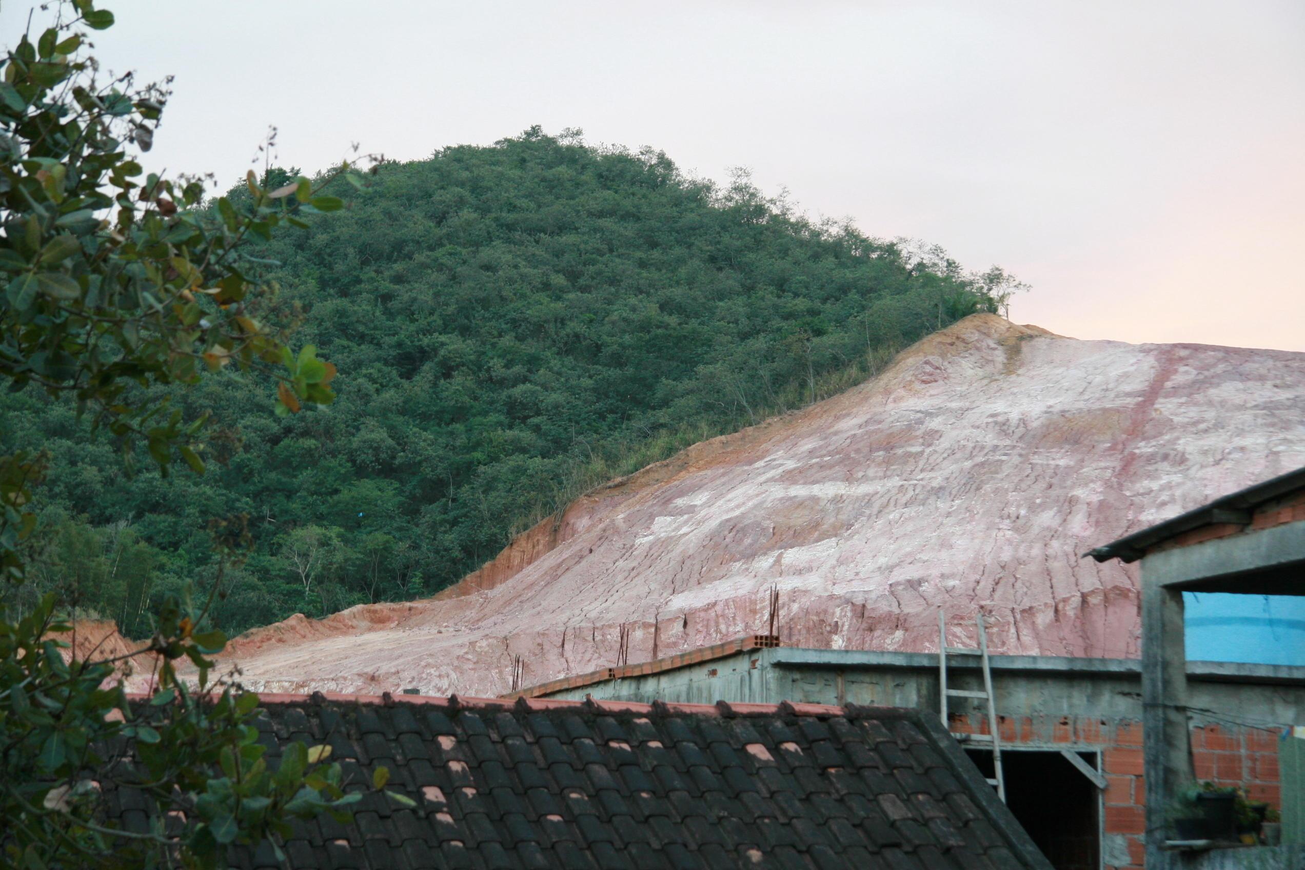 Deforestation - Rainforest Tree Loss Brazil rainforest jungle