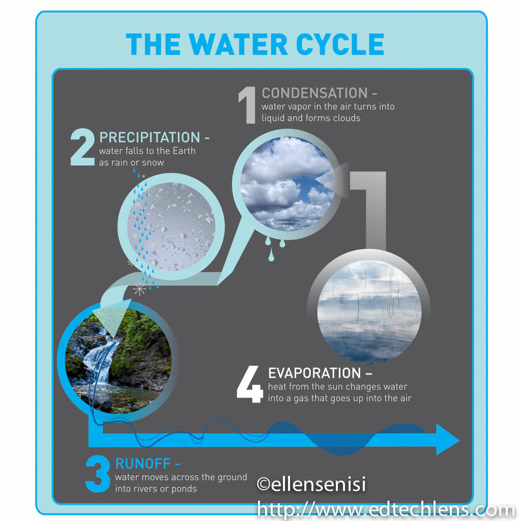 Rainforest Water Cycle Condensation Precipitation Runoff And Evaporation EdTechLens