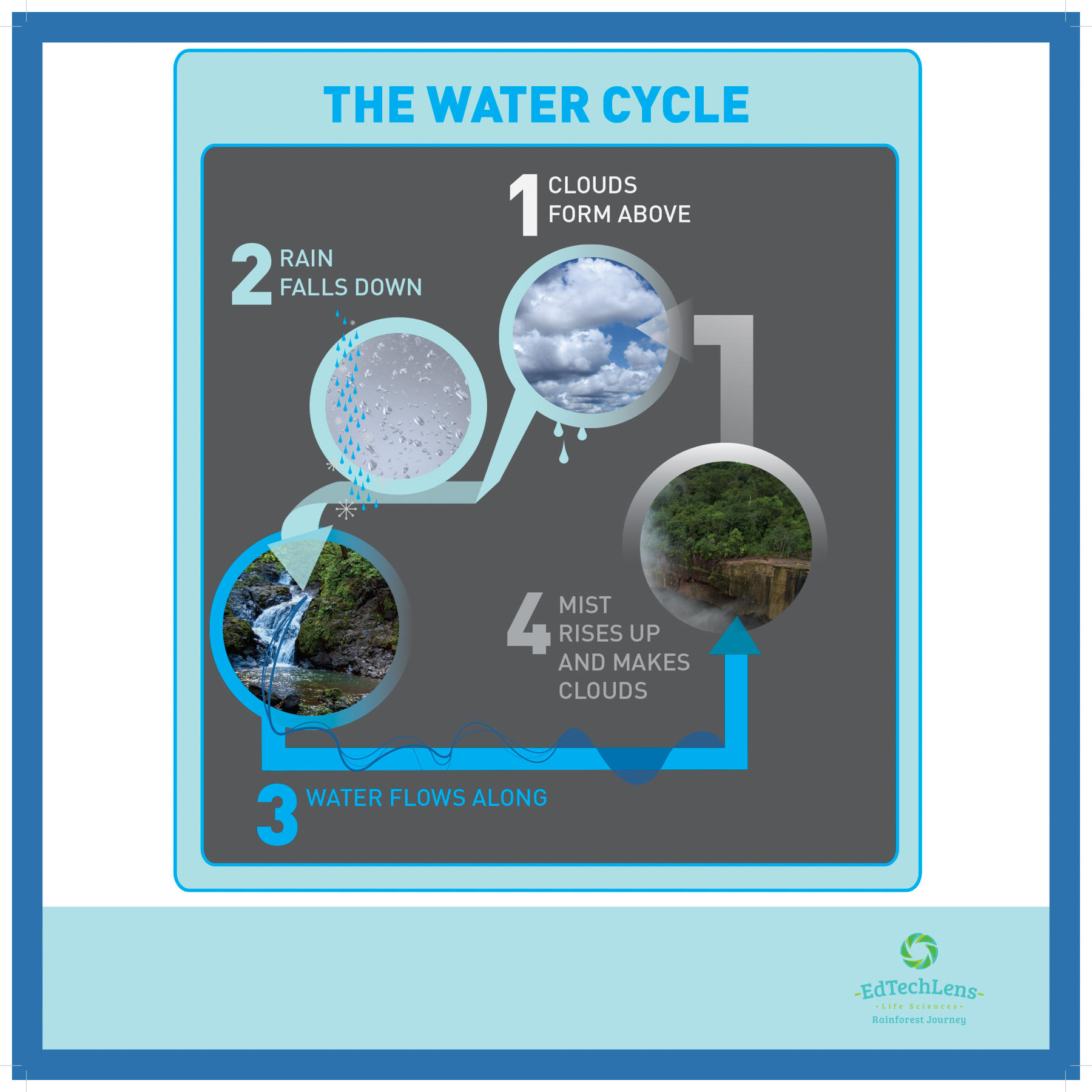 The Water Cycle (Primary)