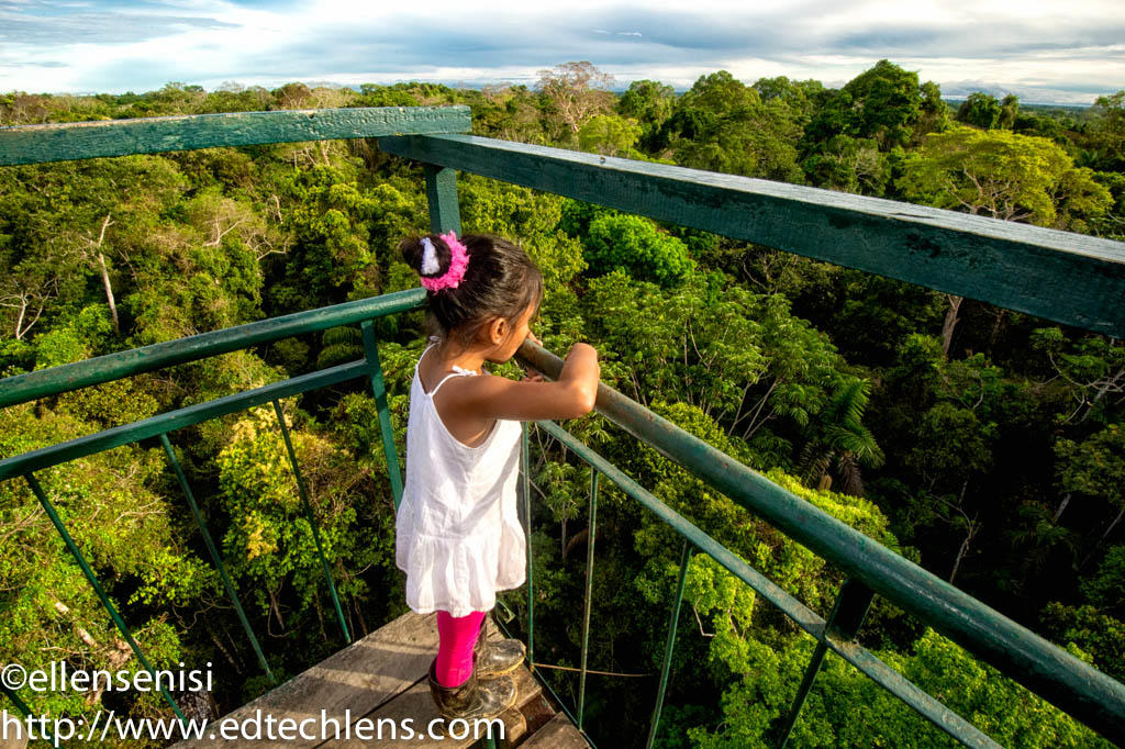 Mariana looks out over the rainforest where she lives in Peru. She is at the top of a lookout tower. Photographs of Mariana in the rainforest are used in some of the lessons in the Rainforest Journey website.